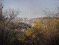 Вид з пейзажної алеї.jpg