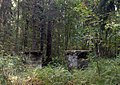 Ворота Новой Сильвии850 аа.jpg