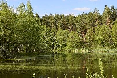 Журавлине озеро 05.jpg