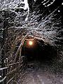 Зима - panoramio - AndGor.jpg