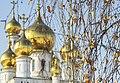 Зимние купола собора (199171029).jpeg
