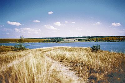 Літо, ставок, гаряча земля.jpg