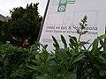 М. Тернопіль, сквер по вулиці В. Чорновола.jpg