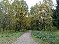 Осень в Дворцовом парке Гатчины - panoramio (2).jpg