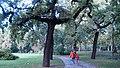 Парк Варошлигет - panoramio.jpg