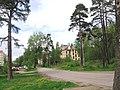 Разлив. Здание старой заброшенной больницы, построенной в конце XIX в. - panoramio.jpg