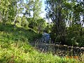Речка ильбин - panoramio.jpg