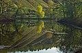 Самарская Лука. Разлив в районе Федоровских лугов 4.jpg