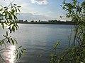 Усолка-Иртыш (Irtysh) - panoramio (7).jpg