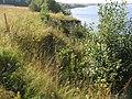 Чусовской залив Камского водохранилища.Район деревни Гари - panoramio.jpg