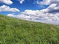 Южный склон Могилы Лисовской - panoramio.jpg