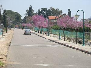 Liman, Israel - Image: לימן כניסה