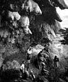 מערת נטיפים ליד מוחייבה טיול טו בשבט תרצו 1936 לאל-חמה - iתמר אשלi btm10853.jpeg