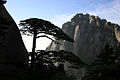 中国黄山11.jpg