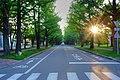 北海道大学(Hokkaido University) - panoramio - t-konno.jpg