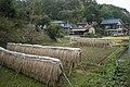 寺家ふるさと村 - panoramio (9).jpg