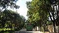 广东省江门市S271公路景色 - panoramio (149).jpg
