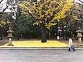 結界 (5260071375).jpg