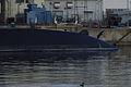 黒い鳥と潜水艦 (6605530321).jpg