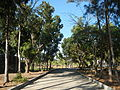 09733jfMaharlika Highway Good Shepherd Chapel San Ildefonso Bulacanfvf 06.JPG