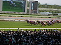 135th Tenno Sho Spring 2007 vol2 DSCN3842 20070429.JPG