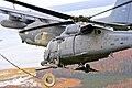 176th Wing - MC-130 HH-60G.jpg