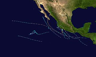1996 Pacific hurricane season Period of formation of tropical cyclones in the Eastern Pacific Ocean in 1996