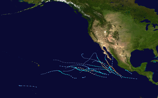 2004 Pacific hurricane season Period of formation of tropical cyclones in the Eastern Pacific Ocean in 2004