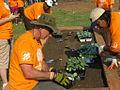 2008 Oliver community garden BaltimoreMD PhotoBy SusanReimer BaltimoreSun 3926429108.jpg