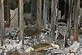 2010년 10월 1일 부산광역시 해운대구 마린시티 우신골든스위트 화재 사고(Wooshin Golden Suite火災事故)-DSC09107.JPG