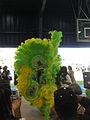 2010UptownIndians-DavisParkShelterGreenFrontCameras.JPG