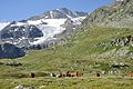 2013-08-05 07-35-57 Switzerland Kanton Graubünden Ospizio Bernina Bernina Hospiz.JPG