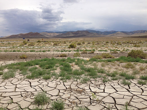 2014-07-28 12 10 37 Drying and cracking mud at the intersection of Nevada State Route 361 (Gabbs Valley Road) and Nevada State Route 844 (Ione Road) near Gabbs, Nevada