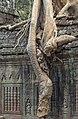 2016 Angkor, Preah Khan (44).jpg