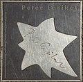 2018-07-18 Sterne der Satire - Walk of Fame des Kabaretts Nr 61 Peter Ensikat-1122.jpg