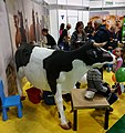 2018 National Agricultural Exhibition in Poznan (20) nauka dojenia krowy.jpg