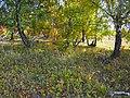 22-09-2012 - panoramio.jpg