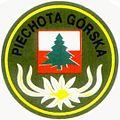 22 karpacki batalion piechoty gorskiej oznaka rozpoznawcza.jpg