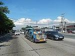 2387Elpidio Quirino Avenue NAIA Road 10.jpg