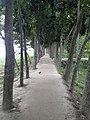 30 Godown - panoramio.jpg
