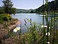 39 Turismo Emilia Romagna 8 giugno 2019 Parco dei laghi di Suviana e Brasimone, un ringraziamento speciale alle guide Eugenia e Walter.jpg