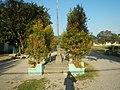 436Lubao, Pampanga landmarks schools churches 07.jpg
