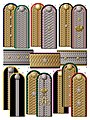 5. Civil braided shoulder boards (1876-1885).jpg
