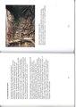 62-63 . side i boken Svedjebruk ISBN 978-82-93036-00-5,.pdf