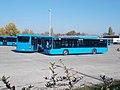 6 Szállító Street, MAN buses, 2020 Csepel.jpg