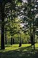 71-212-5019 Budysche park DSC 5207.jpg