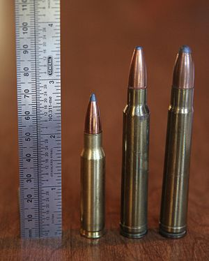 8mm Remington Magnum - 8mm Remington Magnum (center) with .308 Winchester (left) and .375 H&H Magnum (right).