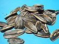 9248Cuisine Foods Seeds Snack Baliuag Bulacan 17.jpg