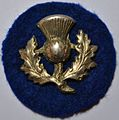 9th Division ww1.jpg