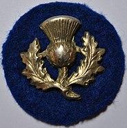 9th Division ww1